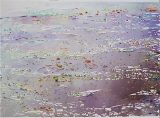 Ryne 2011 (57x76cm)