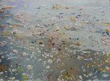 Watermark 2011 (57x76cm)